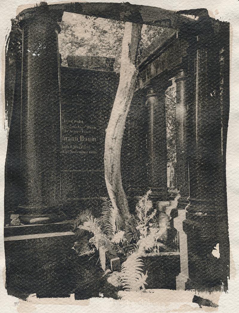 Baum's Baum