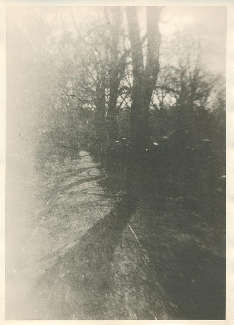 Schatten im Weg