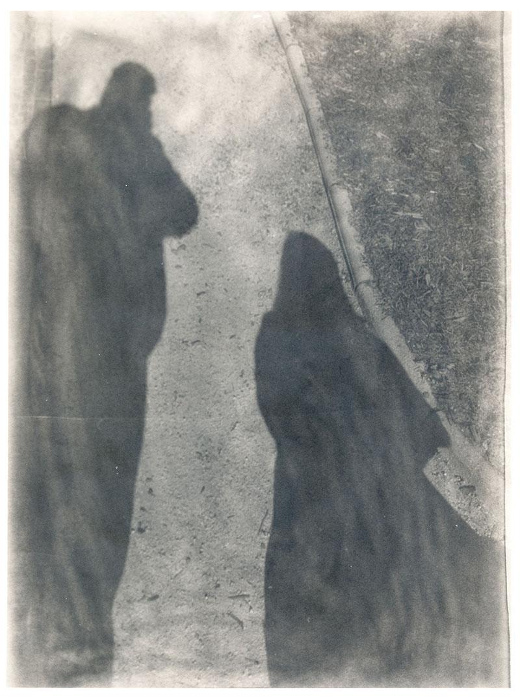 In einem Schatten